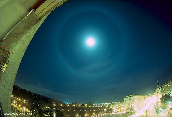 moonhalo casado big